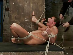 tied brunette got her tongue caught in a mouse trap
